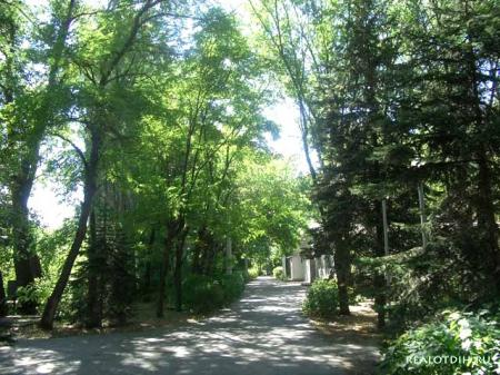 Туристско-экскурсионный оздоровительный комплекс «Волжский»
